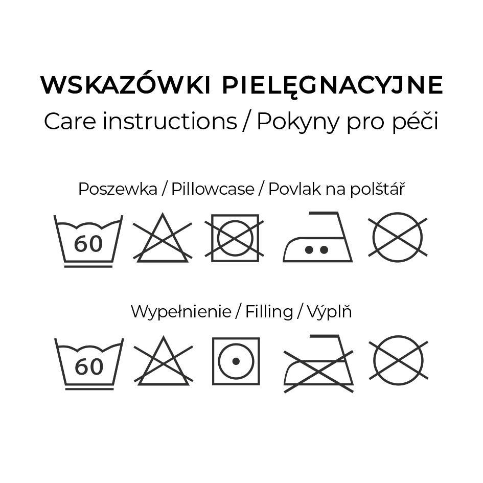 Instruction60